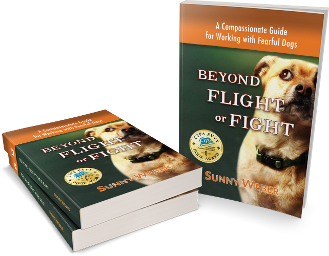 Sunny Weber author beyond flight or fight - a compassionate guide for working with fearful dogs