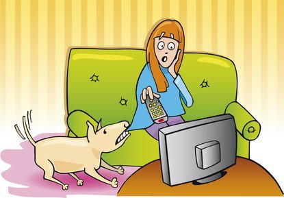 Fearful Dogs And Violent Television