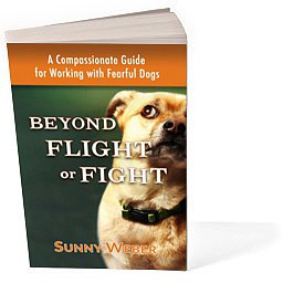beyond-flight-or-fright-sunny-weber-now-available