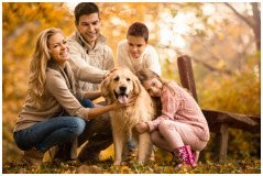Holiday Financial Opportunities for Rescues Offered by Petco Foundation