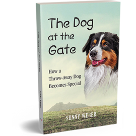 The Dog At The Gate – Available Now!