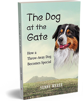 the dog at the gate sunny weber author book cover