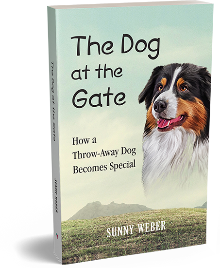 dog at the gate sunny sweber author book cover