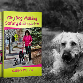 "Why I Wrote ""City Dog Walking Safety & Etiquette"""