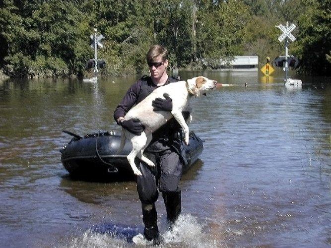 hurricane dog FEMA resuce 500