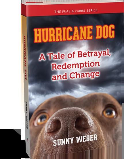 hurricane dog sunny weber author
