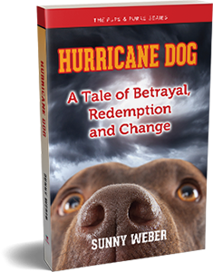 hurricane dog sunny weber post 300h