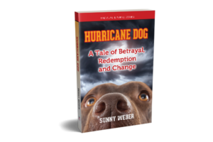 hurricane dog by sunny weber book cover link to amazon page