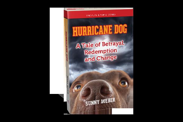 hurricane dog sunny weber post 600x400