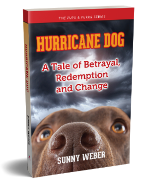 Hurricane Dog - A Tale of Betrayal, Redemption and Change