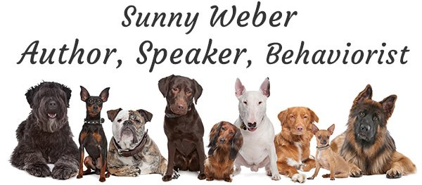 Sunny Weber - Author, Speaker, Behaviorist