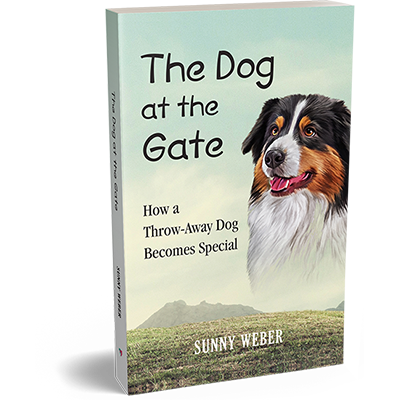 the dog at the gte sunny weber author book cover